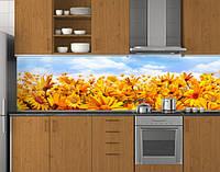 Пластиковый кухонный фартук ПВХ Поле календулы, стеновые панели пластик скинали фотопечать, оранжевые цветы, фото 1