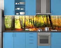 Пластиковый кухонный фартук ПВХ Солнечный лес, стеновые панели пластик скинали фотопечать, Природа, зеленый