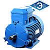Взрывозащищенный электродвигатель 4ВР80В2 2,2 кВт 3000 об/мин (Могилев, Белоруссия)