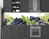 Пластиковый кухонный фартук ПВХ Синий виноград и лоза, Стеновая панель с фотопечатью, скинали, зеленый, фото 1