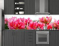 Пластиковый кухонный фартук ПВХ Пышные тюльпаны, Стеновая панель с фотопечатью, Цветы, розовый, фото 1