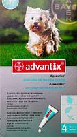 Капли на холку от блох и клещей для собак 4-10 кг, Адвантикс (Advantix), Bayer (Байер), 1пип.*1 мл