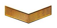 Лычка МВД ефрейтор золото