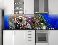 Пластиковый кухонный фартук ПВХ Аквариум 07, стеновые панели пластик скинали фотопечать, рыбы, кораллы, синий, фото 1