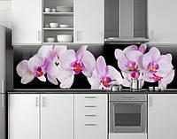 Пластиковый кухонный фартук ПВХ Розовые орхидеи 12, Самоклеящаяся стеновая панель для кухни, Цветы, черный , фото 1