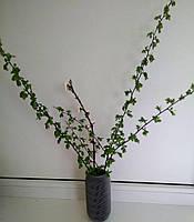 Декоративная ваза эко-пластик Seppia серый 16 см с внутренней стенкой