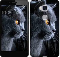 Чехол EndorPhone для Huawei Honor 5X Красивый кот (3038m-176)