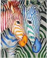 Картина по номерам Полосатые зебры, 40x50 см