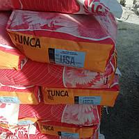 Подсолнечник Тунка, фото 1