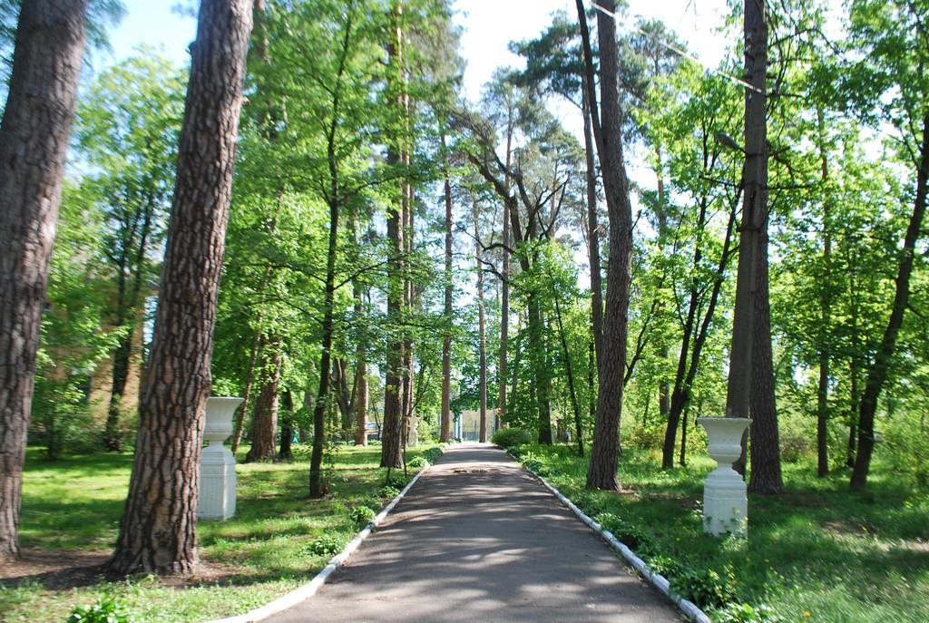 Парковая зона 12