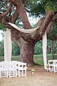 """Весільна церемонія """"Дерево щастя"""""""