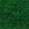 Фетр натуральный 1.3 мм, 20x30 см, ЛЕСНОЙ ЗЕЛЕНЫЙ