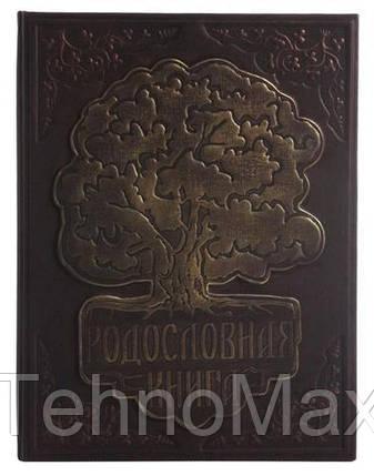 Родословная книга в кожаном переплете с тиснением, фото 2