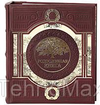Родословная книга в кожаном переплете Окно в прошлое, фото 2