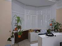 Горизонтальные белые жалюзи 25 мм, фото 1