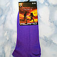 Шкарпетки жіночі мікрофібра фіолетові, розмір 35-39, фото 2