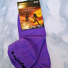 Носки женские микрофибра фиолетовые, размер 35-39