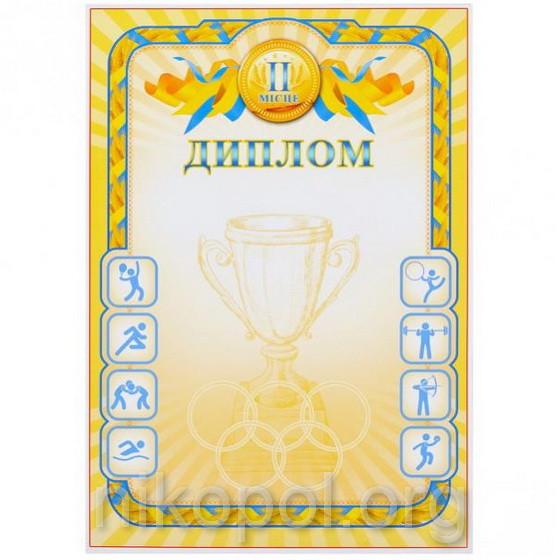 Бланк диплома А4 №51 (Второе место)