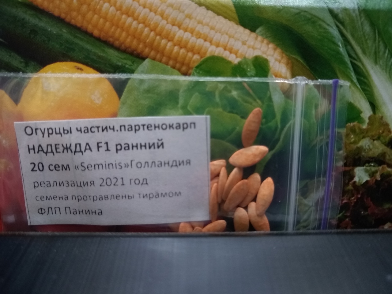 Семена Огурец Надежда F1 гибрид  ранний 20 семян Seminis, Голландия