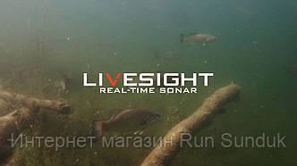 Компанія Lowrance нещодавно оголосила про випуск датчика LiveSight Sonar.