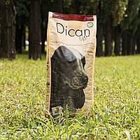 Сухий корм DicanUp Complete Recipe для дорослих собак великих і середніх порід 18кг (95 грн/кг)