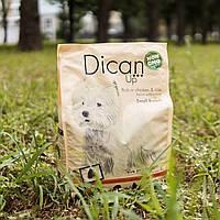 Сухий корм DicanUp Small Breeds для дорослих собак маленьких порід 3кг (108 грн/кг)
