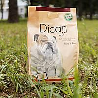 Сухий корм DicanUp Lamb & Rice для дорослих собак великих та середніх порід 4кг (111 грн/кг)