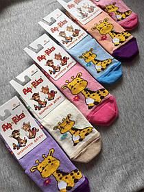 Шкарпетки дитячі демі Африка р 12