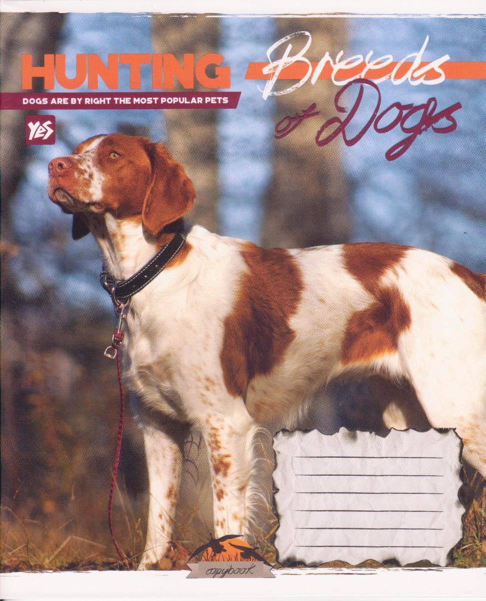"""Тетради  48 л. линия """"Hunting dogs"""""""