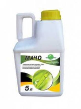 Вспомогательное вещество МАЧО, фото 2