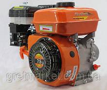 Двигатель бензиновый ЗАРЯ 170F-S