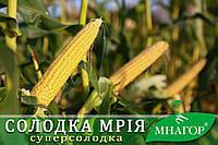 Сахарная кукуруза Сладкая Мечта F 1, 1000 семян на 1.5 сотки, раннеспелый (69-71 дней), Sh2-тип