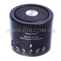 2 в 1 Портативный MP3 плеер, FM радио (SD, USB, Bluetooth)