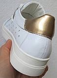 Стильные! В стиле Филипп Плейн женские кеды кожа  перфорация Philipp Plein слипоны белого цвета, фото 5