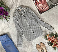 Коттоновая рубашка в полоску  BL1915019