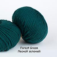 Толстая перуанская пряжа The Wool (200 грамм/ 80 метров) - We Are Knitters™ - цвет Лесной зеленый