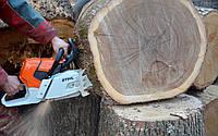 Пилим деревья, обрезаем сад, расчистка кустарников в Харькове и области, фото 1