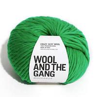 Толстая перуанская пряжа Crazy Sexy Wool (200 грамм/ 80 метров) - Wool And The Gang™ - цвет Изумруд
