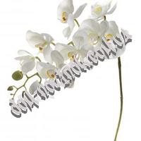 Орхидея силиконовая белая 90 см.
