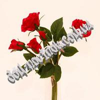 Букет силиконовых роз (6шт), малиновый