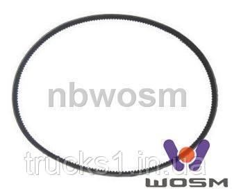 Ремінь B-125 (WOSM)