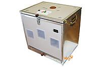 Инкубатор для вывода пчелиных маток ИБ-240