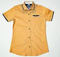 Рубашка-шведка  для мальчика рост 134 см, фото 1