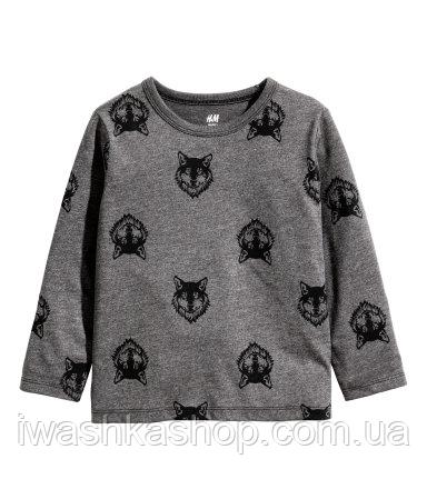 Стильный темно-серый лонгслив с волками на мальчика 2 - 4 года, р. 98 - 104, H&M