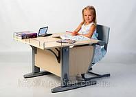 Стол СУТ.14 + Полка задняя СУТ.14.210 + Стул СУТ.01 клен/серый (пластик)