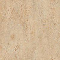 Натуральный линолеум Forbo Marmoleum Click