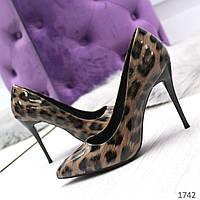 252403bcb Потребительские товары: Леопардовые туфли оптом в Украине. Сравнить ...