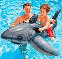Плотик Акула для детей от 3 лет. Детский надувной, водный плот, матрас Интекс для плавания с ручками