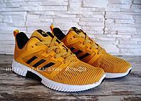 Мужские кроссовки в стиле Adidas Climacool , желтые 41,43