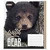 Тетрадь 1вересня 12 листов клетка  WILD FOX